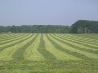 Farmland Rental Resources